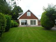 Detached Bungalow for sale in Newton Close...
