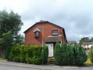 3 bedroom semi detached house for sale in Bryn Siriol...