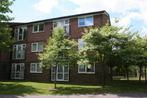 Charter Way Flat to rent