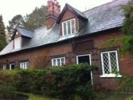 Cottage to rent in Westfield Road...