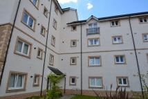 1 bed Apartment to rent in Old Harbour Square
