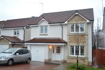4 bed Detached house to rent in Glentye Drive, Tullibody