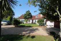 Cottage for sale in Salterns Lane, Bursledon...