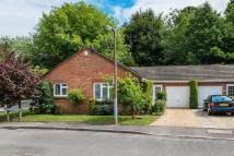 Semi-Detached Bungalow for sale in Camelsdale