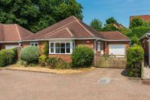 3 bed Detached Bungalow in Fernhurst