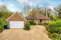 4 bed Detached Bungalow for sale in Northchapel