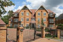 2 bed Apartment to rent in Packhorse Road...