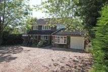Green Lane Detached house to rent