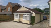 Bungalow to rent in Beeches Road...