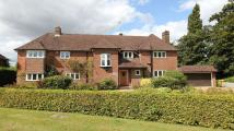 Top Park Detached house to rent