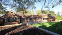 property to rent in Gold Hill East, Chalfont St Peter