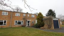 End of Terrace property to rent in Berwick Close...