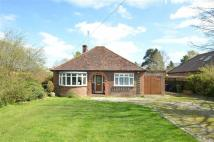 Bungalow for sale in Frog Grove Lane...