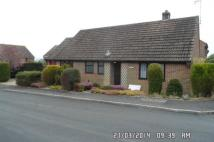 Detached Bungalow to rent in Burstead...