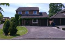 Detached house to rent in Gillingham