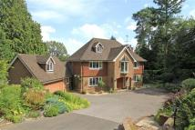 5 bedroom Detached property for sale in Farnham Lane, Haslemere...