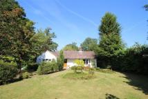 Plaws Hill Bungalow for sale