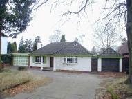 Upland Road Detached Bungalow for sale