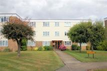 Flat to rent in Fairways, Wyatts Drive...