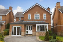 Detached house to rent in HARROGATE