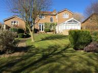 4 bed Detached property for sale in Brancepeth Chare...
