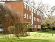 Flat to rent in Sollershott Hall, Herts