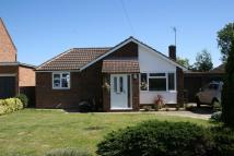 Detached Bungalow for sale in Youngman Avenue, Histon...