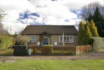 Detached Bungalow for sale in Godwin Close, CAMBRIDGE