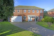 Detached house for sale in Cardinal Grove...