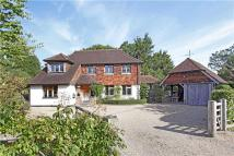 Detached home for sale in Shirleys, Ditchling...
