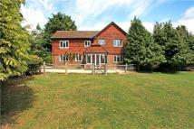 4 bed Detached property for sale in Whitesmith, Lewes...