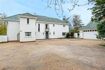 6 bedroom Detached property for sale in High Beech Lane...