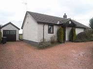 Detached Bungalow to rent in Dale View, Laversdale...