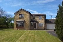 Detached home for sale in Canonbie, DG14