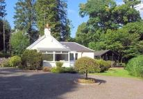 Cottage for sale in Langholm, Dumfriesshire...