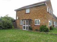 Lavender Rise semi detached house to rent