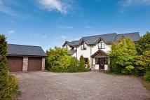 4 bedroom Detached house in Rectory Close, Ysceifiog...