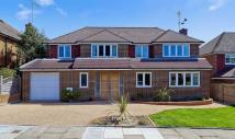 Detached property for sale in Rodmell Road, Seaford...