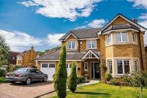 Detached house for sale in Lybster Way, Westcraigs...