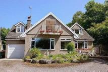 Detached property for sale in Tanglewood...