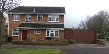 Detached home for sale in Willmers Close, Bedford...