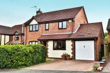 4 bed Detached house for sale in Oak Close, Bromyard...