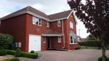 Detached property for sale in Galloway Road, Swindon...