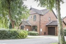 The Grove semi detached house for sale