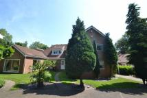 Detached house in Laburnum Grove, Cleadon