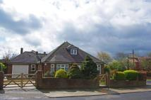 Detached Bungalow for sale in Hillview...