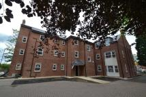 1 bedroom Apartment to rent in The Cedars, Ashbrooke