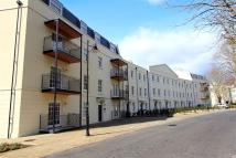 1 bed Flat in Mount Wise