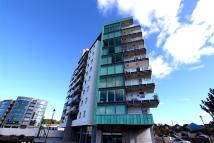 Flat to rent in SUTTON HARBOUR