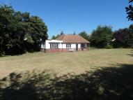 3 bedroom Detached Bungalow to rent in Margate